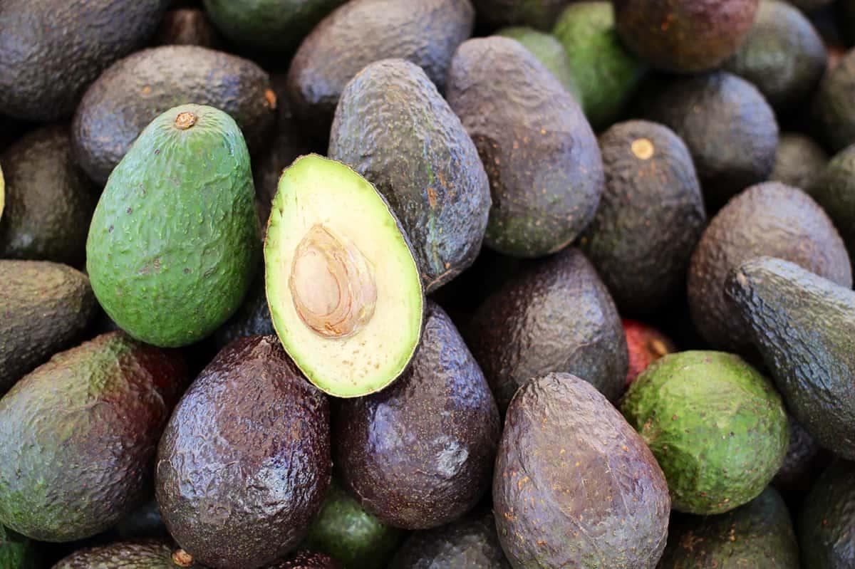 NCN Avocados