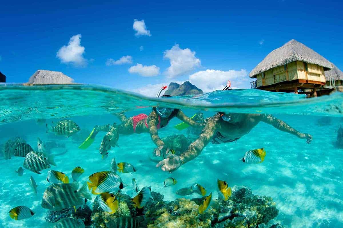 Bora Bora Pearl Resort swimming near over-water bungalows